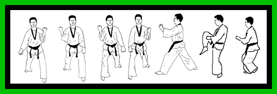 TaeKwonDo Form Dissection